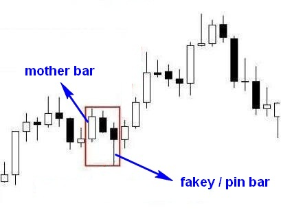 Forex fakey pin bar