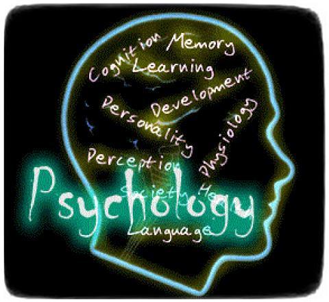 Dasar Psikologi Dalam Trading