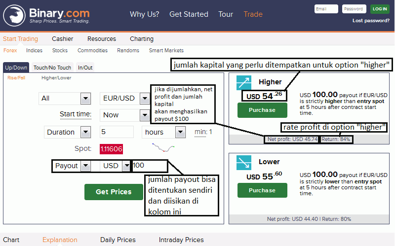 apa itu binary option
