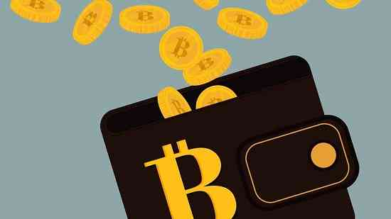 dompet bitcoin