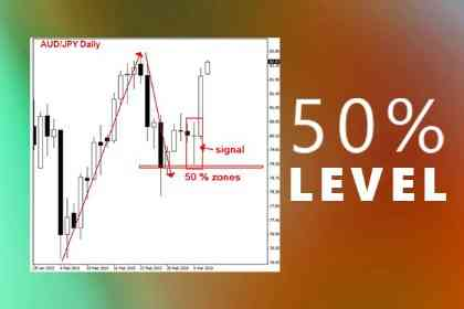 Fibonacci Retracement Level 50% Dengan Konfirmasi Price Action