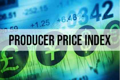 Indikator Fundamental Producer Price Index